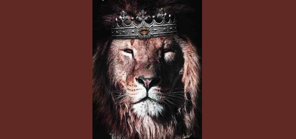 il segno del leone